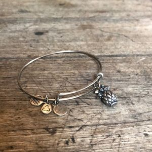 Alex and Ani silver pineapple bracelet